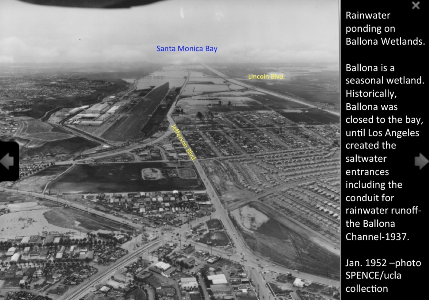 Ballona.Wetlands.1957.photo_.of_.rain_.water_.soaked.fields.png