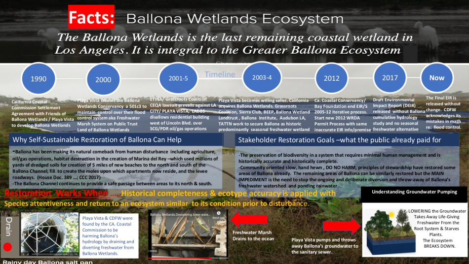Ballona.Wetlands.Ecosystem.Timeline.1990.to_.2020.and_.Restoration